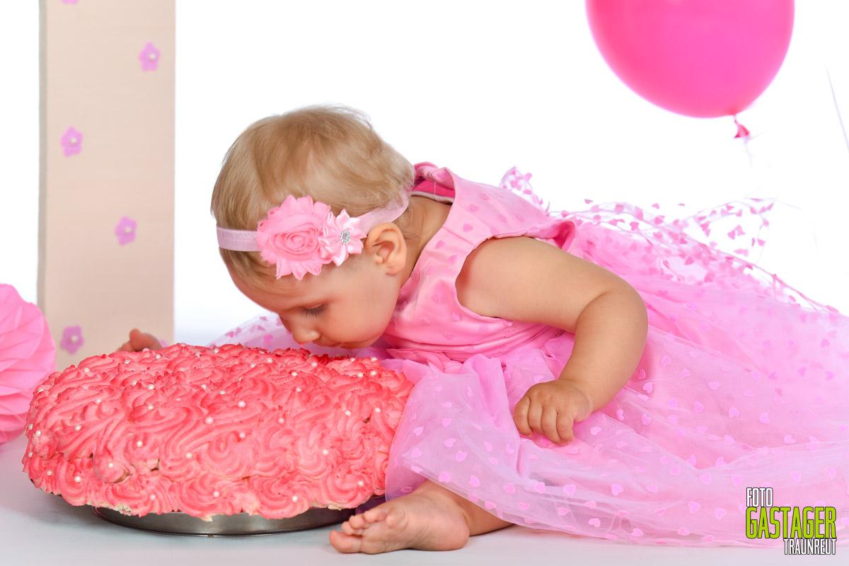 Trash the Cake B14